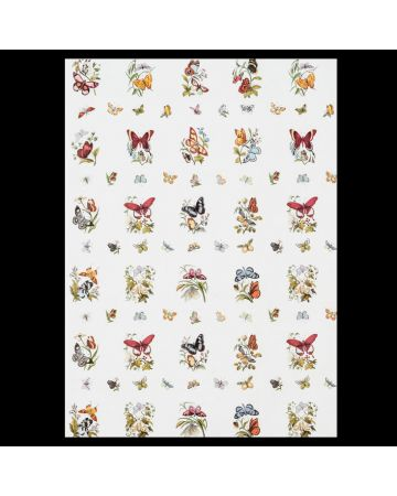 25 Pack Gift Wrap - Butterfly