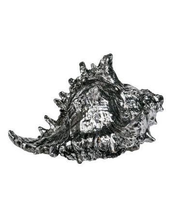 Strombus Shell - 'Silver'