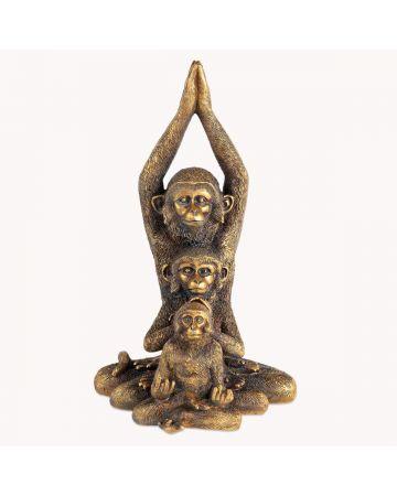 Darwin Monkey Family