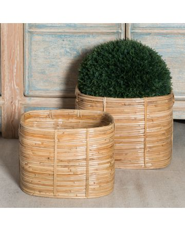 Safari Set of 2 Rectangular Cane Baskets