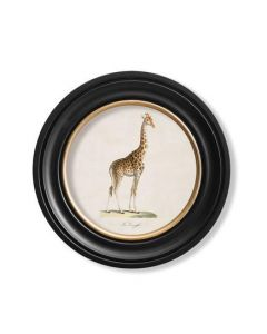 Round Giraffe print - 44cm